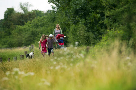 Family visitors with a dog, walking through the meadows at Runnymede, Surrey.